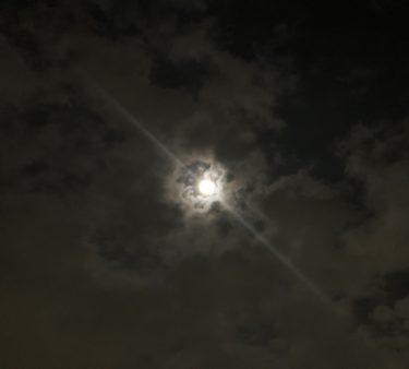 LUNA SEE (月見) 習慣