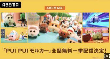 【アニメ全12話無料】『PUI PUI モルカー』「ABEMA一挙配信」習慣