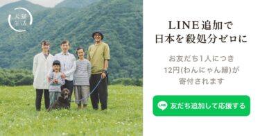 【LINE友だち追加で12円(ワンニャン縁)寄付】前澤友作「殺処分ゼロを目指す」『犬猫生活プロジェクト』習慣